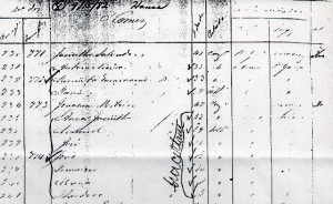 sshansa 1882 ship manifest ana jacintha de mello pacheco122
