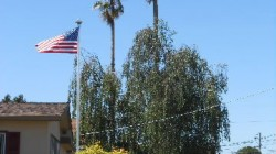Flag waving in California